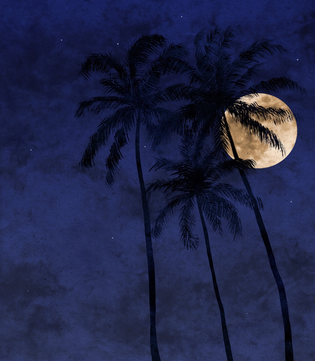 Tropical Nights - II | a poem by Uthman Bello